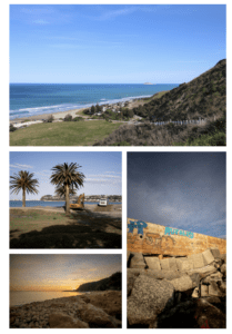 CLOCKWISE FROM TOP: Ocean Beach (photo Rosa Turley); private seawall at Clifton Beach; HDC new rock revetment at Clifton Beach; NCC beach nourishment at Westshore (photos Tom Allan).